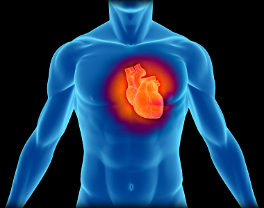 Chronic Heart Inflammation Can Be Deadly