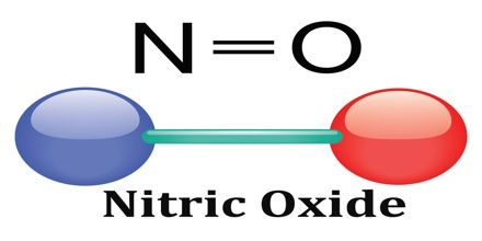 Day 67 Nitric Oxide the Colourless Gas